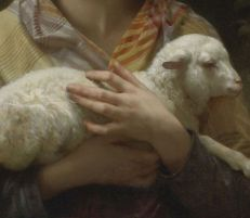 lamb-in-arms